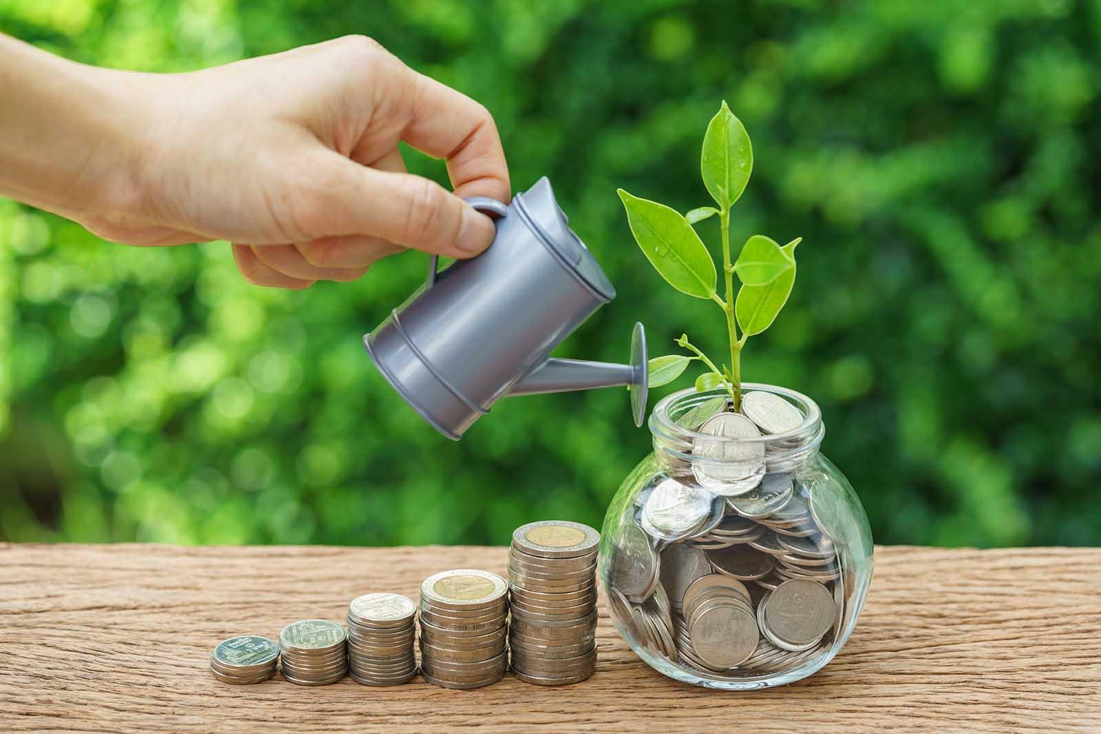reduser kostnadene dine og bli rik